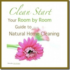 Clean-Start-Flower-Banner-250x250